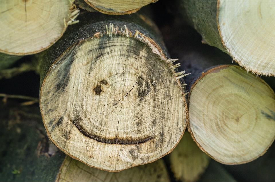 Brændestykke med smil